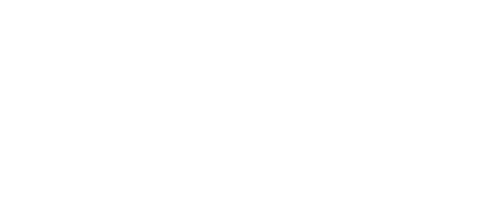 The Leaders Institute Logo White